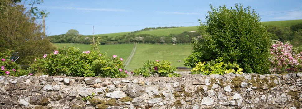 Countryside views over a stone wall